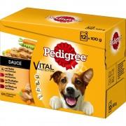 Pedigree бонус опаковка паучове - 24 x 100 г в сос