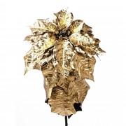 Poinsetta Gold
