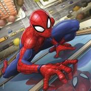 Puzzle Ravensburger - Spiderman, 3x49 piese (08025)