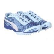 Puma evoSPEED Haraka 5 Wn Cricket Shoes For Women(White, Blue)