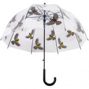 Átlátszó esernyő, cinege TP274