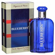 BlueBerry Perfume Eau de Parfum - 100 ml (For Men Women)
