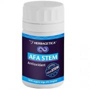 AFA STEM 60cps HERBAGETICA