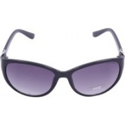 Miami Blues Wayfarer Sunglasses(Blue)