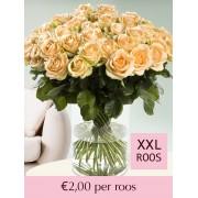 Surprose 102 tot en met 500 zalmkleurige rozen Rozen online bestellen & versturen Surprose.nl