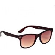 Ted Smith Wayfarer Sunglasses(Brown)