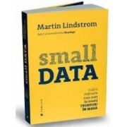 Small data. Indicii marunte care scot la iveala trenduri in masa - Martin Lindstrom
