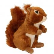Merkloos Pluche eekhoorn knuffel zittend 17cm
