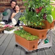 3 Jardiniere cu rezervor apa si carucior