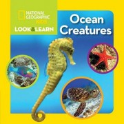 National Geographic Kids Look and Learn: Ocean Creatures, Hardcover