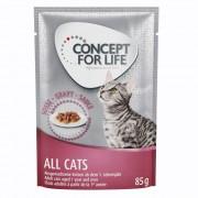 48x85g Concept for Life All Cats szószban nedves macskatáp