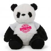 3.5 feet big panda teddy bear wearing special Best Sister T-shirt