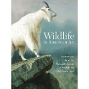 Wildlife in American Art: Masterworks from the National Museum of Wildlife Art, Paperback/Adam Duncan Harris