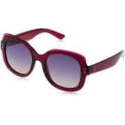 Polaroid Butterfly Sunglasses(Violet)