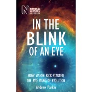 In the Blink of an Eye: How Vision Kick-Started the Big Bang of Evolution