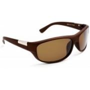 Ivonne Butterfly Sunglasses(Brown)