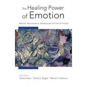 The Healing Power of Emotion: Affective Neuroscience, Development and Clinical Practice, Hardcover/Diana Fosha