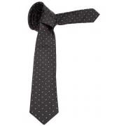 Ermenegildo Zegna Silk Tie Black