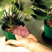 Gel pentru hidratarea plantelor Aqua Gel, 400 ml