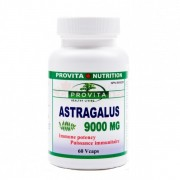 Astragalus 9000 mg 60 capsule Provita Nutrition