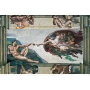 PUZZLE MICHELANGELO - CREAREA LUI ADAM 5000 PIESE Ravensburger