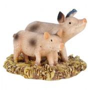 Wonderlnad Miniature fairy garden Two piggy(4 x 4 x 3 cm)