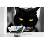 Fotobehang vinyl - Zwart-wit foto van de kop van een zwarte kat met gele ogen breedte 330 cm x hoogte 220 cm - Foto print op behang (in 7 formaten beschikbaar)