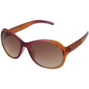 Blue Cross Over-sized Sunglasses(Brown)