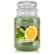 Country Candle Citrus & Sage 2 Wick Large Jar 652 g