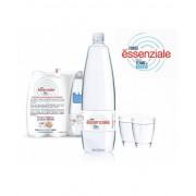 Ferrarelle Spa Fonte Essenziale Acqua Minerale Naturale Di Origine Termale In Confezione Pet 6x400ml