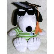 "Hallmark Peanuts Joe Cool 2011 Graduate 10"" Snoopy Plush Graduation Doll Money/Gift Card Holder"