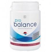 LR Health & Beauty Pro Balance lúgosító ásványok - 360 db tabletta