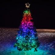 Guirlande Lumineuse Connectée Twinkly de 8m avec 100 LED Multicolores