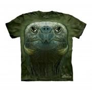Playera 4d - Caballero -3527 Turtle Head
