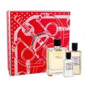 Hermes Terre d´Hermès подаръчен комплект EDT 100 ml + душ гел 80 ml + вода след бръснене 40 ml за мъже