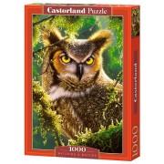 Castorland Pussel Den eviga väntandet 1000 Bitar