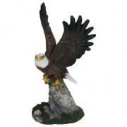 Merkloos Decoratie Amerikaanse zeearend beeldje 19 cm - Action products