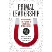 Primal Leadership: Unleashing the Power of Emotional Intelligence, Paperback