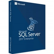 Microsoft SQL Server 2017 Enterprise 2 Core
