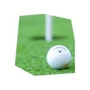 Den s golfem, , 2 osoby, 4 hodiny