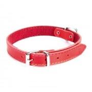 Dingo Obroża skórzana podszyta filcem 2,0x45cm czerwona