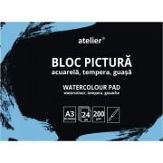 Bloc pictura Atelier A3, 24 foi