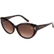 SWAROVSKI Cat-eye Sunglasses(Brown)