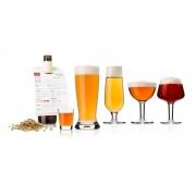 Set pahare degustare bere