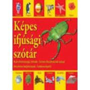 Kepes ifjusagi szotar - Dictionar vizual pentru cei mici Hu