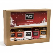 Taylerson's Syrups Coffee Lovers Christmas Gift Collection