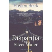 Disparitia din Silver Water (eBook)