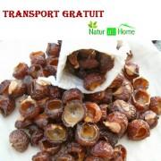 Nuci de Săpun 1000g TRANSPORT GRATUIT