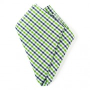 Ulterior Motive Gingham Garden Handkerchief Green/Blue/White