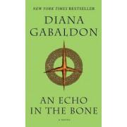 An Echo in the Bone, Paperback